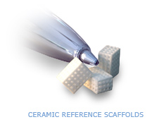 3D Reference Scaffolds